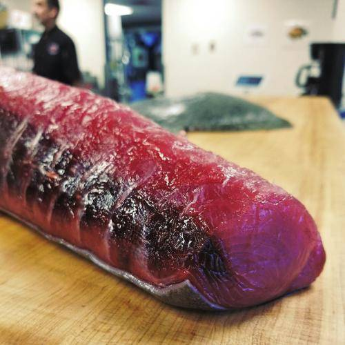 Reel Foods Fish Market Large Eye Tuna